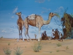 Sat with the Camels