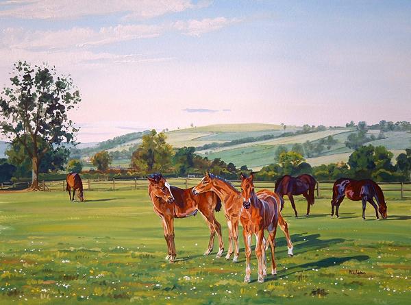Foals at Stud