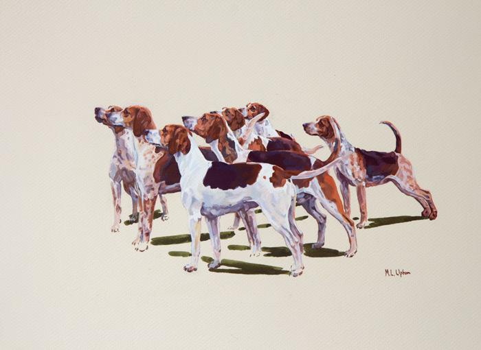 Palmer Marlborough Beagles